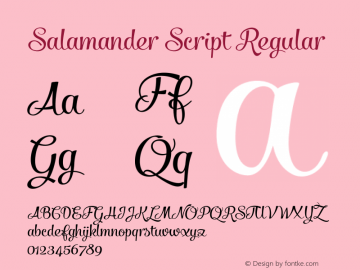 Salamander Script Regular Version 1.000 Font Sample