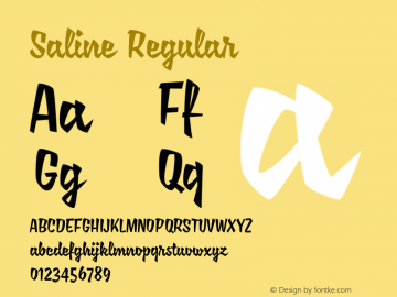Saline Regular 1.000;com.myfonts.easy.mika-melvas.saline.regular.wfkit2.version.3UdJ Font Sample
