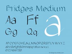 Bridges Medium Version 001.000图片样张