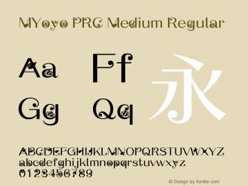 MYoyo PRC Medium Regular Version 1.00图片样张