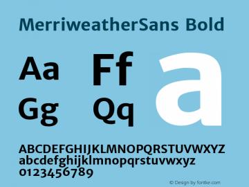 MerriweatherSans Bold Version 1.003; ttfautohint (v0.97) -l 13 -r 13 -G 0 -x 14 -f dflt -w