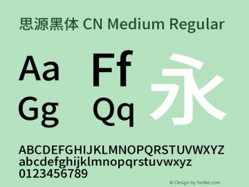 思源黑体 CN Medium Regular Version 1.000;PS 1;hotconv 1.0.78;makeotf.lib2.5.61930图片样张