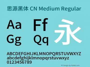 思源黑体 CN Medium Regular Version 1.002;PS 1.002;hotconv 1.0.78;makeotf.lib2.5.61930图片样张