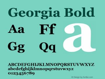 Georgia Bold Version 5.00x图片样张