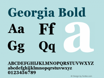 Georgia Bold Version 6.01图片样张