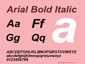 Arial Bold Italic Version 3.11 Font Sample