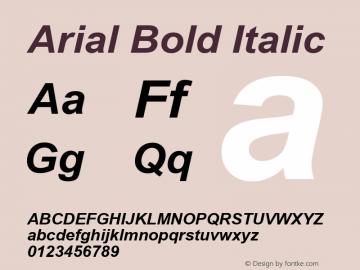 Arial Bold Italic Version 5.08 Font Sample