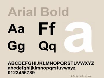 Arial Bold Version 5.08 Font Sample