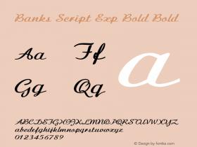 Banks Script Exp Bold Bold Version 1.000图片样张
