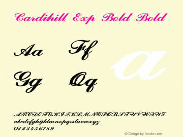 Cardihill Exp Bold Bold Version 1.000图片样张