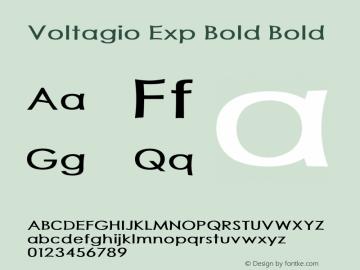 Voltagio Exp Bold Bold Version 1.000图片样张