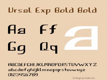 Ursal Exp Bold Bold Version 1.000图片样张