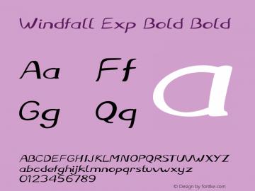 Windfall Exp Bold Bold Version 1.000图片样张