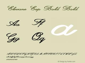Elevane Exp Bold Bold Version 1.000图片样张