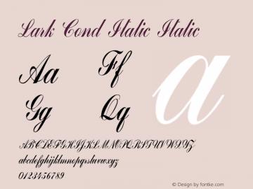 Lark Cond Italic Italic Version 1.000图片样张