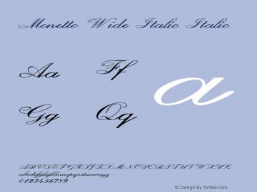 Monetto Wide Italic Italic Version 1.000图片样张