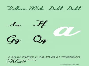 Vellum Wide Bold Bold Version 1.000图片样张