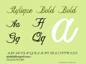 Stylique Bold Bold Version 1.000图片样张
