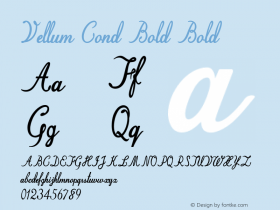 Vellum Cond Bold Bold Version 1.000图片样张