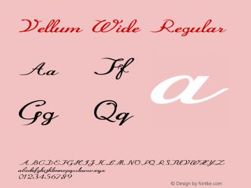 Vellum Wide Regular Version 1.000图片样张