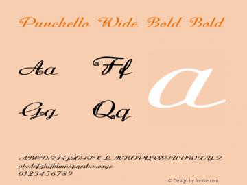 Punchello Wide Bold Bold Version 1.000图片样张