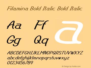 Filamina Bold Italic Bold Italic Version 1.000图片样张