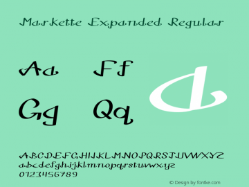 Markette Expanded Regular Version 1.000图片样张