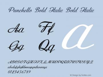 Punchello Bold Italic Bold Italic Version 1.000图片样张