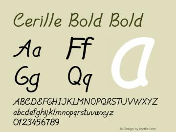 Cerille Bold Bold Version 1.000图片样张