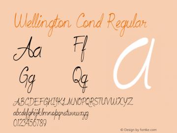 Wellington Cond Regular Version 1.000图片样张