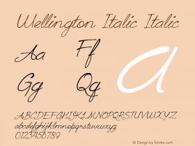 Wellington Italic Italic Version 1.000图片样张
