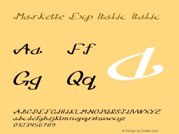 Markette Exp Italic Italic Version 1.000图片样张