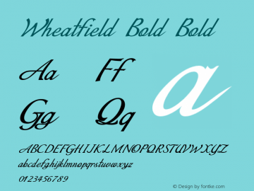 Wheatfield Bold Bold Version 1.000图片样张
