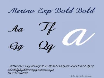 Merino Exp Bold Bold Version 1.000图片样张