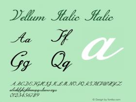 Vellum Italic Italic Version 1.000图片样张