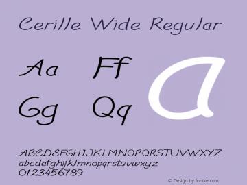 Cerille Wide Regular Version 1.000图片样张