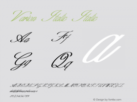 Varion Italic Italic Version 1.000图片样张
