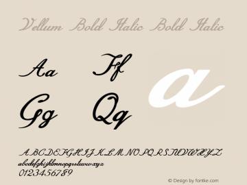 Vellum Bold Italic Bold Italic Version 1.000图片样张