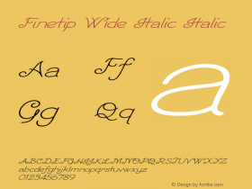 Finetip Wide Italic Italic Version 1.000图片样张