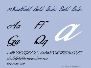 Wheatfield Bold Italic Bold Italic Version 1.000图片样张