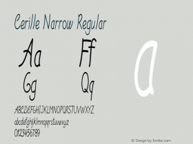 Cerille Narrow Regular Version 1.000图片样张