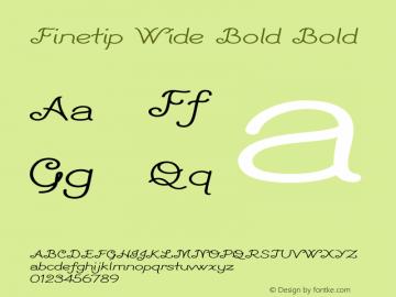 Finetip Wide Bold Bold Version 1.000图片样张