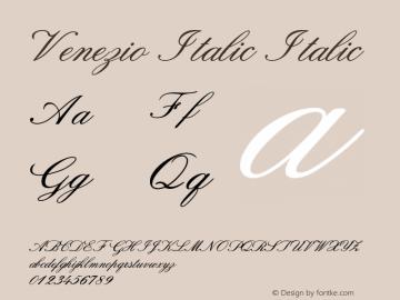 Venezio Italic Italic Version 1.000图片样张