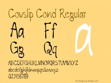 Cowslip Cond Regular Version 1.000图片样张