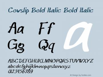 Cowslip Bold Italic Bold Italic Version 1.000图片样张