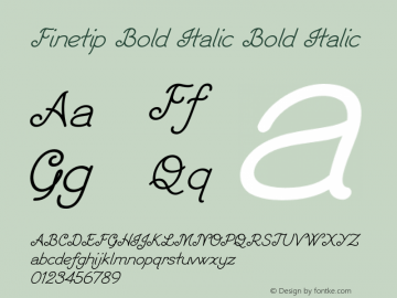 Finetip Bold Italic Bold Italic Version 1.000图片样张