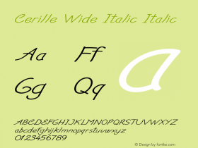 Cerille Wide Italic Italic Version 1.000图片样张