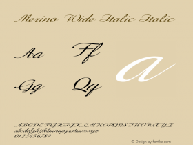 Merino Wide Italic Italic Version 1.000图片样张