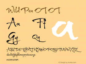 Wild Pen OT OT Version 1.000 Font Sample