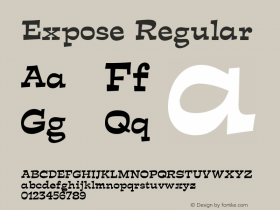 Expose Regular Unknown Font Sample